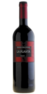 Red wine La Planta Roble 2012 (Arzuaga)