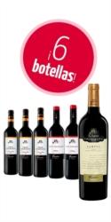 Selección de seis vinos tintos Bodegas Fariña (3 Gran Colegiata Lágrima + 2 Gran Colegiata Roble Francés Crianza + 1 Gran Colegiata Campus Viñas Viejas)